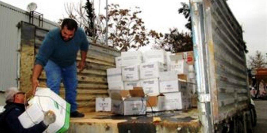 Aydın'da 10 ton bitki koruma ürünü imha edildi