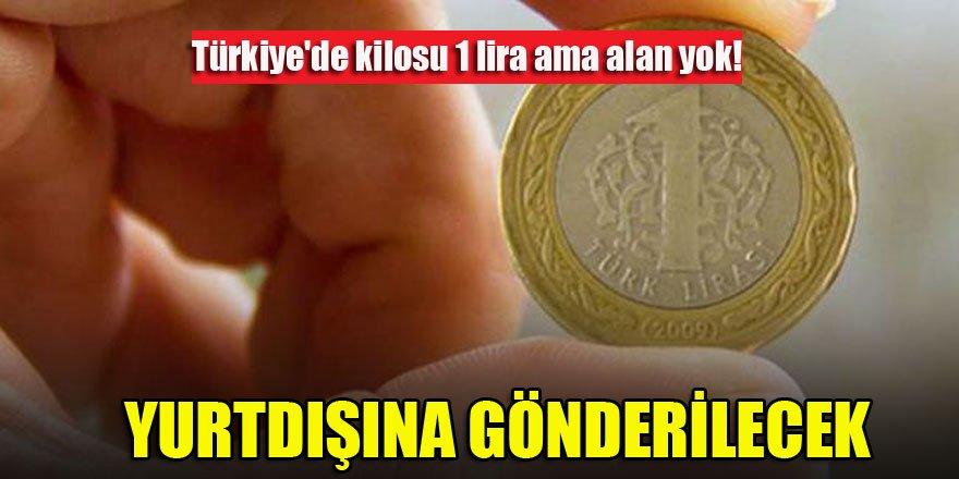 Türkiye'de kilosu 1 lira ama alan yok! Yurtdışına gönderilecek