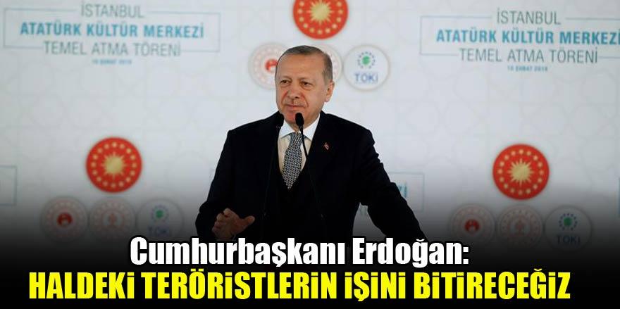 Cumhurbaşkanı Erdoğan: Haldeki teröristlerin işini bitireceğiz