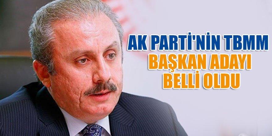 AK Parti'nin TBMM Başkan aday belli oldu