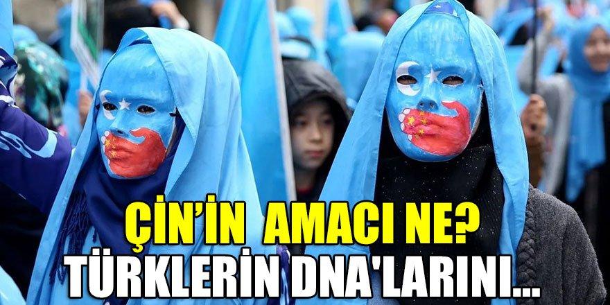 Çin Türklerin DNA'larını topladı! Neyin peşindeler?