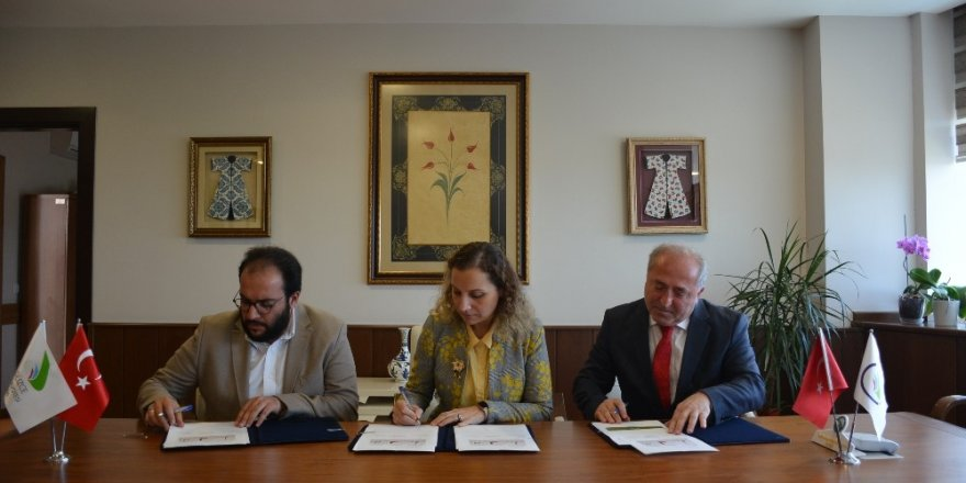 Düzce Üniversitesi fındık verimini ve kalitesini artırmak için çalışıyor