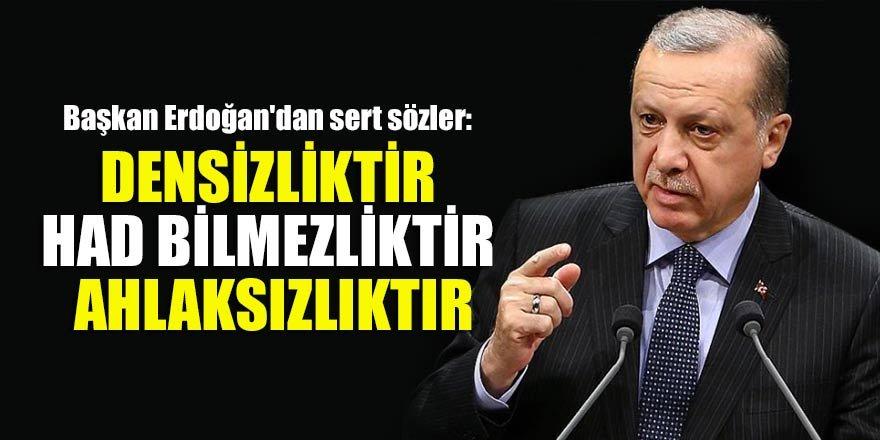 Başkan Erdoğan'dan sert sözler: Densizliktir had bilmezliktir ahlaksızlıktır