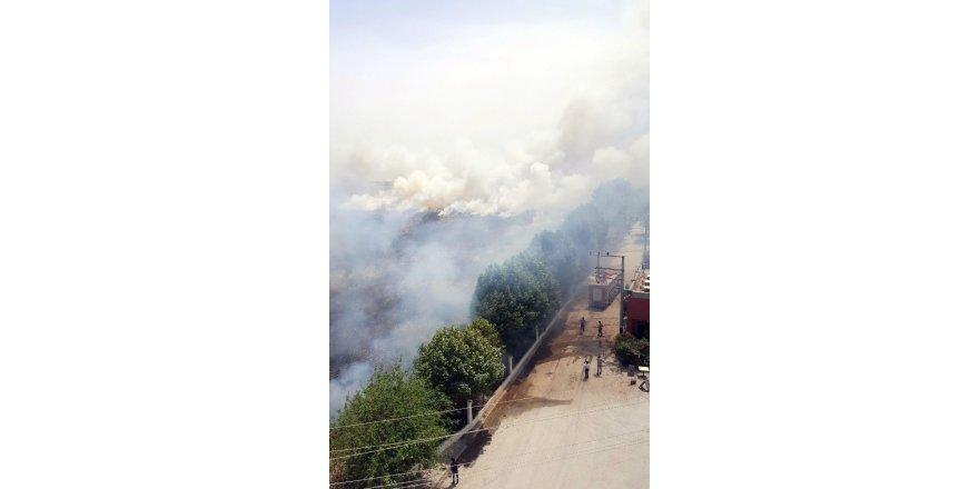 Türkiye - Suriye sınırındaki mayınlı alanda yangın çıktı