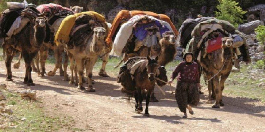 Sarıkeçili Yörükler, konargöçer hayatı sürdürüyor