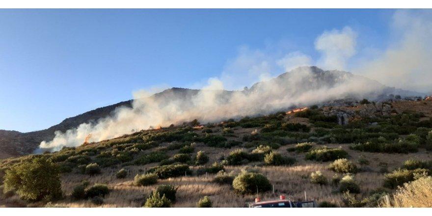 Adana'daki orman yangınını söndürme çalışmaları sürüyor