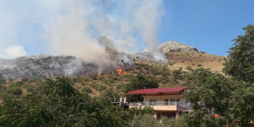 Ceyhan'daki orman yangını kontrol altına alındı