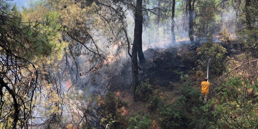 Buldan'da 1 hektar alan kül oldu
