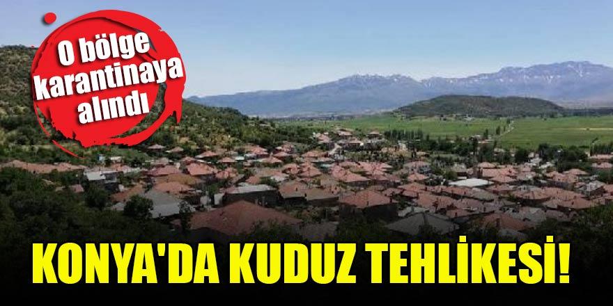 Konya'da kuduz tehlikesi! O bölge karantinaya alındı