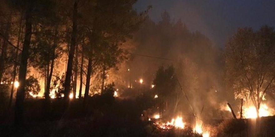 Dalaman'daki yangın kontrol altına alındı