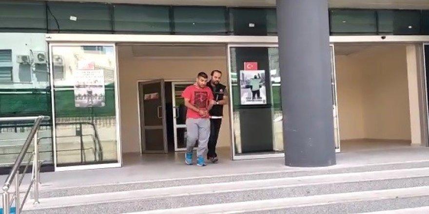 5 kilo bonzai ile yakalandı
