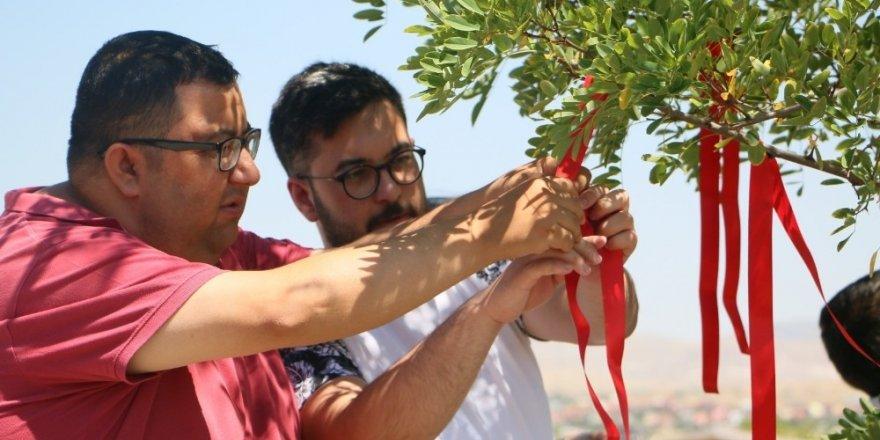 ZİÇEV'li öğrenciler 'Sevgi Dileği Ağacı'nda umutlarını tazelediler