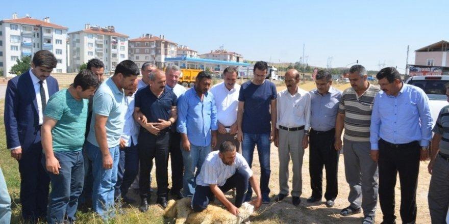 Bünyan'da Kurban Kesim Kursu Açıldı