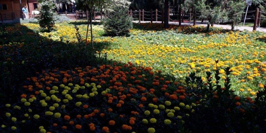 Çiçeklerle donatılan Ekopark bir başka güzel