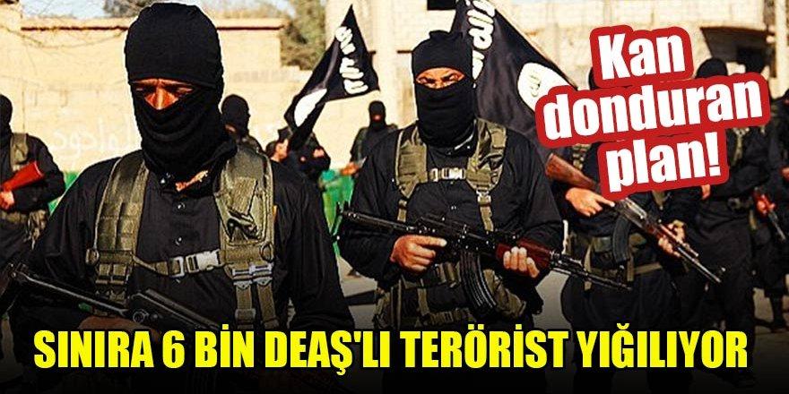 Kan donduran plan! Sınıra 6 bin DEAŞ'lı terörist yığılıyor