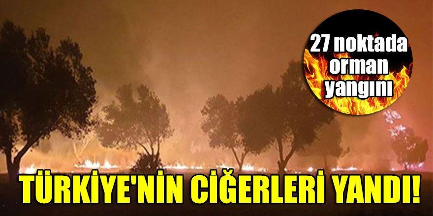 Türkiye'nin ciğerleri yandı! 27 noktada orman yangını