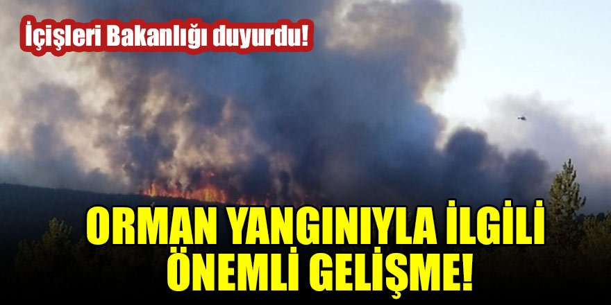 İçişleri Bakanlığı duyurdu! Orman yangınıyla ilgili önemli gelişme