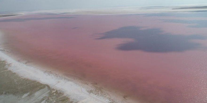 Görenler şaşkın! Tuz Gölü tamamen pembeye büründü