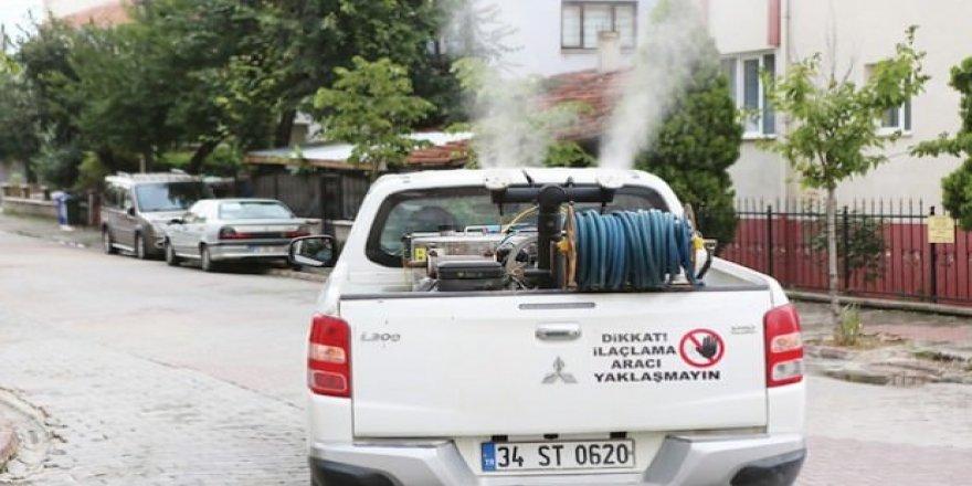 Çöplüğe dönen Bolu sokakları için lavanta pişkinliği