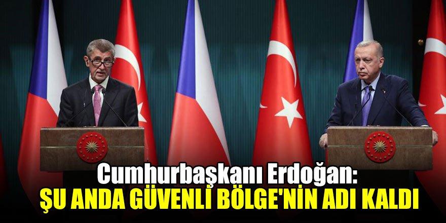 Cumhurbaşkanı Erdoğan: Şu anda Güvenli Bölge'nin adı kaldı