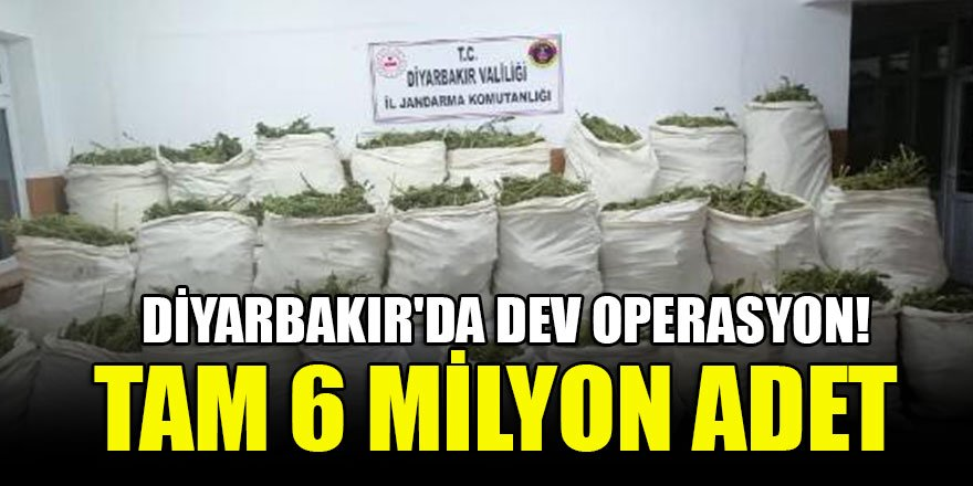 Diyarbakır'da dev operasyon! Tam 6 milyon adet