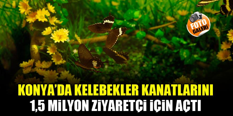 Konya'da kelebekler kanatlarını 1,5 milyon ziyaretçi için açtı