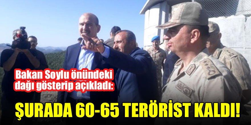 Bakan Soylu önündeki dağı gösterip açıkladı: Şurada 60-65 terörist kaldı