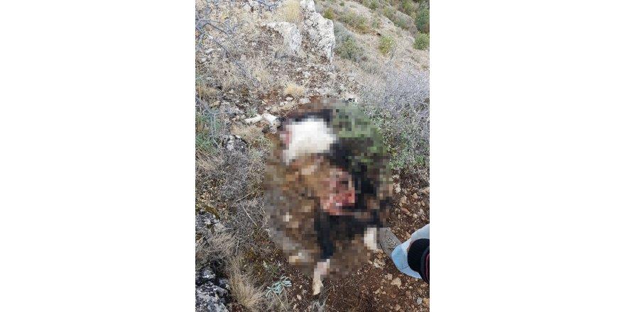 Konya'da şüpheli ölüm