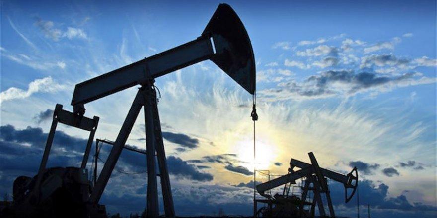 Brent petrolün varili 16,73 dolar