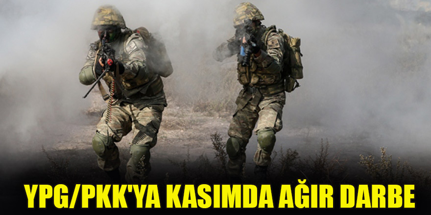 YPG/PKK'ya kasımda ağır darbe