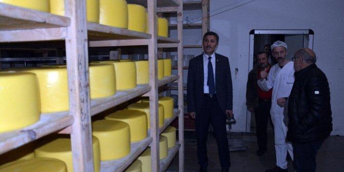 Başkan Kaya, süt ürünleri fabrikasını inceledi