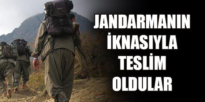 Jandarmanın iknasıyla terör örgütü PKK'da yönetici düzeydeki 3 terörist teslim oldu