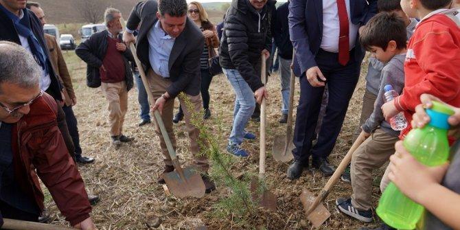 Çorlu Öğretmenler Ormanı büyüyor