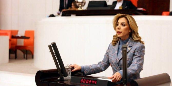 """AK Partili Gökçan, """"Milas'a doğalgaz verilmesi için çalışmalarımız devam ediyor"""""""