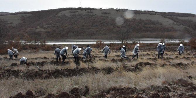 Yükümlüler 600 adet ceviz ve badem fidanını toprakla buluşturdu