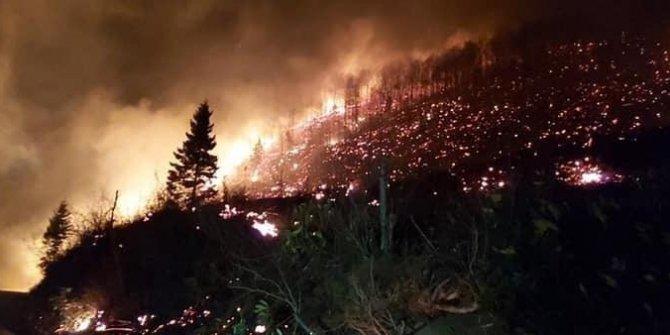 """İçişleri Bakanlığı: """"Karadeniz'deki yangınlarda sabotaj bulgusu yok"""""""