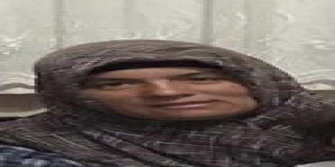 Kamyonetin çarptığı 3 çocuk annesi kadın hayatını kaybetti