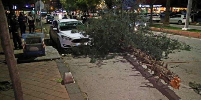 Adana'da şiddetli rüzgar yaşamı olumsuz etkiledi