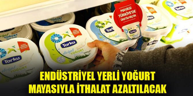 Torku'nun ürettiği endüstriyel yerli yoğurt mayasıyla ithalat azaltılacak