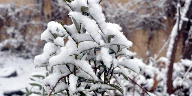 Sınırın sıfır noktasında kar sevinci