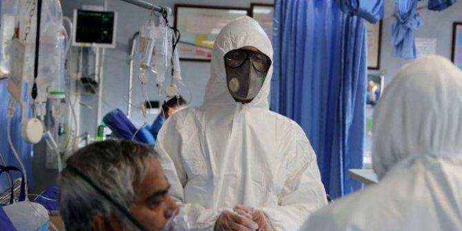 Avustralya'da koronavirüs tespit edilen vaka sayısı 41 oldu