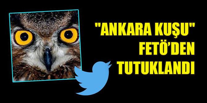 """FETÖ soruşturmasında """"Ankara Kuşu"""" adlı hesabın kullanıcısı tutuklandı"""