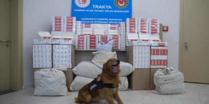 Edirne'de zehir tacirlerine operasyon