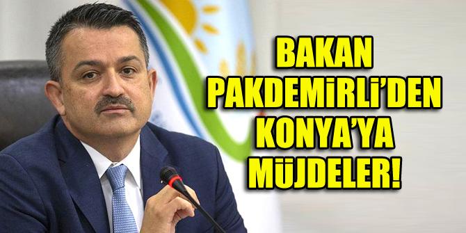 Bakan Pakdemirli'den Konya'ya müjdeler!