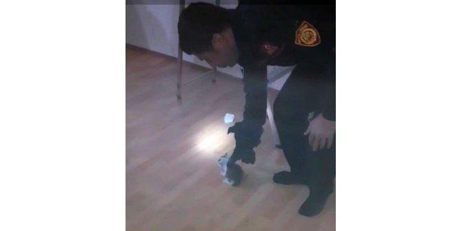 Bacaya sıkışan yavru kediyi itfaiye kurtardı