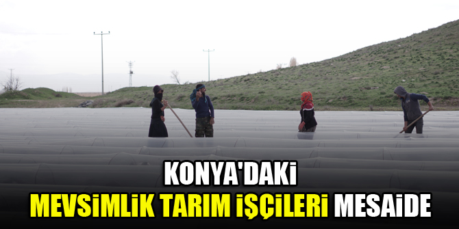 Konya'daki mevsimlik tarım işçileri mesaide