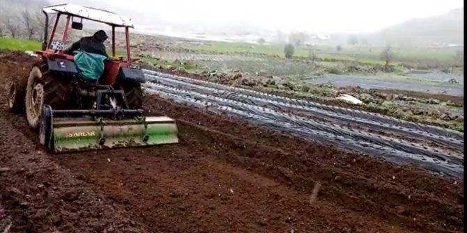 Konya'da çiftçiler kar yağışı altında çilek ekimi yapıyor