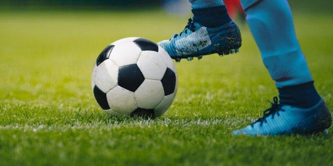 Liglerin iptal edildiği Hollanda'da şampiyon çıkmayacak