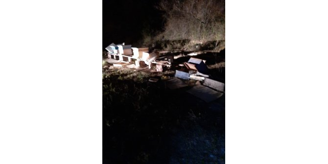 Tosya'da arı kovanlarına ayı saldırdı