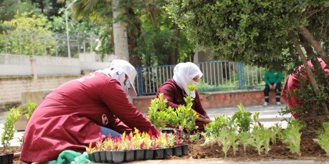 Kızıltepe'de refüjler çiçek açtı